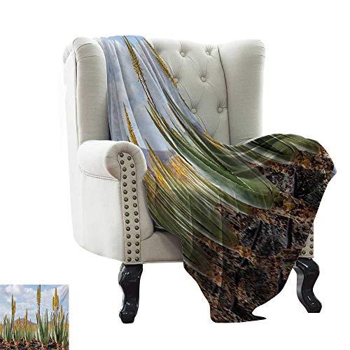 Amazon.com: Manta de planta, muy suave, ligera, hojas verdes ...