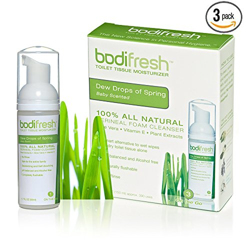 Bodifresh Cleansing Foam with Aloe and Vitamin E (Baby Scented) - Gently Removes what Dry Toilet Paper Leaves Behind- Flushable Wipes (Toilet Paper Foam)