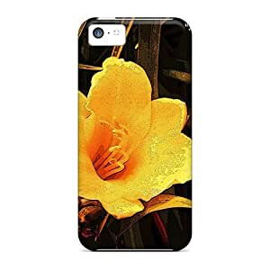 New Style Tpu 5c Protective Case Cover/ Iphone Case - Picasso