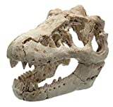 Resin Aquarium/Terrarium Decoration Crocodile Skull For Fish Tank Resin Ornament