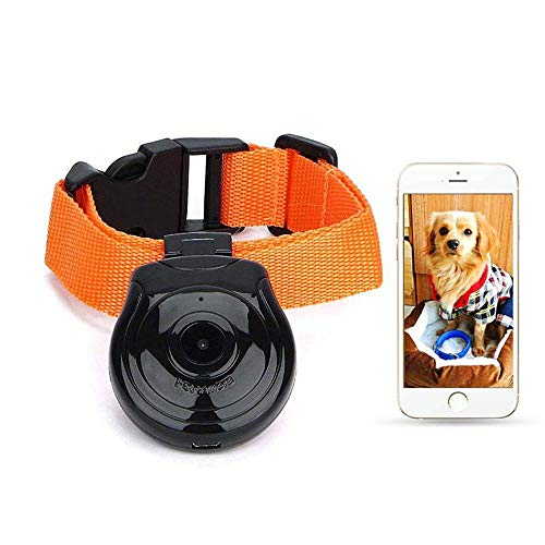 Leegoal Waterproof Dog Collar Type Mini Camera, USB Digital DVR Video Recorder Monitor for Dog Cat Puppy, Lightweight LCD Display Screen Support TF Memory Card Up to 32G