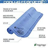 Frogg Toggs Chilly Pad Cooling Towel, Sky