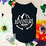 Adventure Begins Dog Shirt