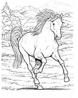 Wonderful World Of Horses Coloring Book Dover Nature