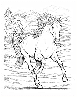wonderful world of horses coloring book dover nature coloring book amazoncouk john green 8601300296371 books - Nature Coloring Book