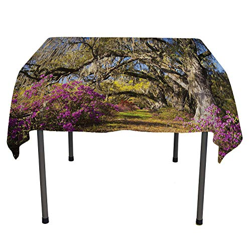 Americana Landscape Decor Polyester tablecloths Flowers in Charleston South Carolina Azalea Blooms Oak Tree Violet Purple All Weather Outdoor Table Cloth Spring/Summer/Party/Picnic 70 by 70