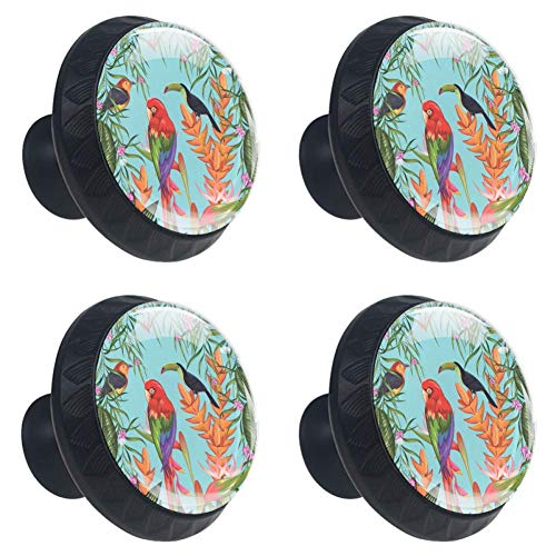 Anmarco Tropical Parrots Toucan and Flowers Drawer Knobs Pull Handles 30MM 4 Pcs Glass Cabinet Drawer Pulls for Home Kitchen Cupboard