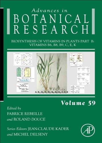 Biosynthesis of Vitamins in Plants Part B: Vitamins B6, B8, B9, C, E, K (Advances in Botanical Research Book 59)