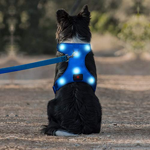 Domi LED Dog Harness, USB Rechargeable No Pull Pet Harness, Adjustable Padded Soft Vest for Small Medium Large Dogs(S, Blue)