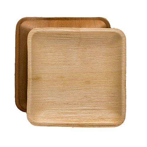 Disposable Palm Areca Dinner Plate 9