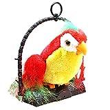 JUMBO Talk Talking Back Parrot Bird Kids Toy - 81