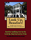 A Walking Tour of Beaufort, South Carolina (Look Up, America!)