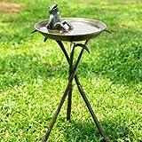 SPI Home 33563 Cool Frog Birdbath