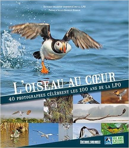 Lire en ligne L'OISEAU AU COEUR pdf ebook