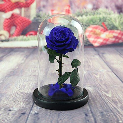 lkklily-valentine Regalos del día de rosas de alta gama ...