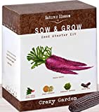 5 Exotic Vegetables Growing Kit - Grow 5 Vibrant Plants From Seed: Purple Carrots, Blue Corn, Yellow Cucumber, Rainbow Chard & Broccoli. Fun Gardening Kit For Boys & Girls. Garden Gift for Children