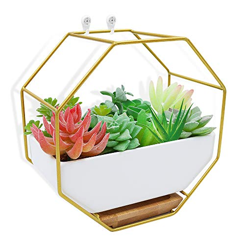 XiaZ Hanging Planter Wall White Hexagon Ceramic, Brass Stand and Bamboo Saucer, Succulent Air Plants Cactus Pearls Vase Holder Container, Flower/Plants Pots for Indoor or Outdoor Decoration