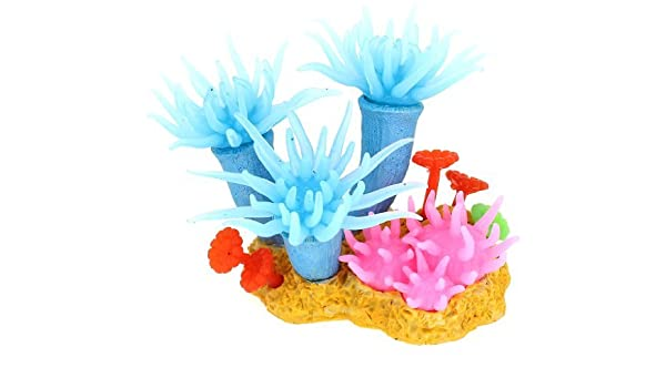 Amazon.com : eDealMax pecera artificiales Coral Decoración, 12 cm, Azul : Pet Supplies
