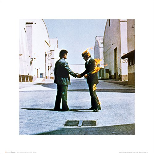 Pink Floyd Wish You Were Here Album Cover Psychedelic Classic Rock Music Poster Print 16 by 16 (Prints Floyd Pink)