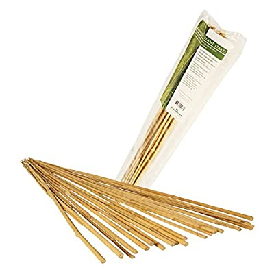 Hydrofarm HGBB2 2' Natural Bamboo Stake, pack of 25