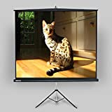 "SNOWHITE 70'' Tripod Projector Screen Luxurious | 67.7 x 67.7"" viewing area 