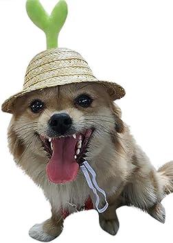 ToDIDAF - Gorro para Mascotas con Visera Ajustable con Agujeros ...