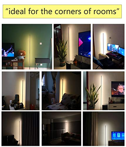 LED Floor Lamp Bedroom Modern Standing lamp with Remote Control dimmable Night Lights Corner Light for Living Room, 18W 1450lm