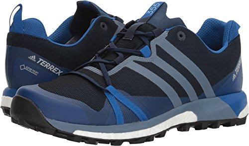 Cola Footwear (adidas outdoor Mens Terrex Agravic GTX Shoe (6 - Col. Navy/Raw Steel/Blue)