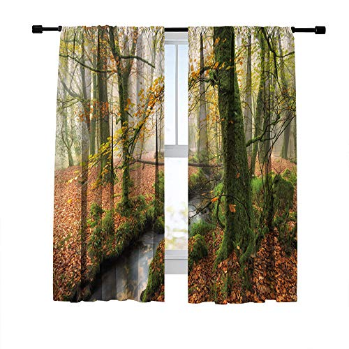 Misscc Blackout Curtains for Living Room Bedroom Kitchen Cafe, Misty Autumn Woodland and Stream at Golitha Falls on Bodmin Moor in Cornwall, Print Window Curtains Room Darkening Window Drapes 2 Panels