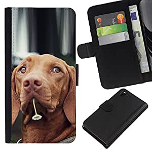 All Phone Most Case / Oferta Especial Cáscara Funda de cuero Monedero Cubierta de proteccion Caso / Wallet Case for Sony Xperia Z3 D6603 // Vizsla Dog Breed Canine Flower Cute Pet