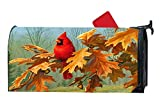 Cardinal Bird Fall Decorative Magnetic Mailbox Cover Standard Mailbox Wrap with Animals Design 6.5 x 19 Inches