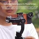 Ulanzi PT-4 Removable Gimbal Counterweight for Balancing Moment Anamorphic Lens, 60g Counter Weight for zhiyun Smooth 4/Osmo Mobile 2/Moza Mini-S/Feiyu Vimble 2 Gimbal 6