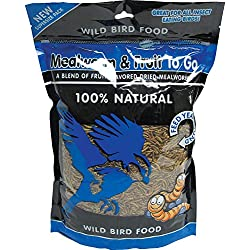 Mealworm and Fruit To Go Wild Bird Food Size: 1.1 Lbs
