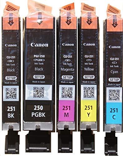 Canon setup  PGI-250 & CLI-251 Colors (CMY) and PGI/CLI Black Ink Cartridges - 5 Pack setup cartridge