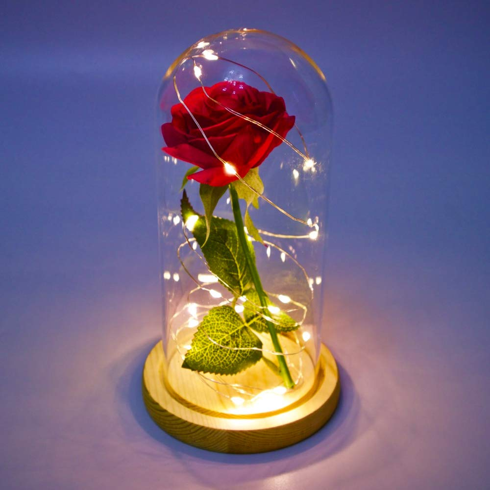 daoruike Glass Display Dome with Led Light String and Silk Rose Beauty and The Beast Rose Kit Gift Decor for Valentine's Day Wedding Anniversary Birthday, 4.3 x 8.3 Inch