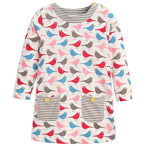 Frogwill Little Girls Long Sleeve Birdie Jersey Dresses Tunics 5T (Little Girl Boutique)