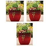 Better Homes and Gardens Bombay Decorative Outdoor Planter, Red Sedona - 16'' (3)