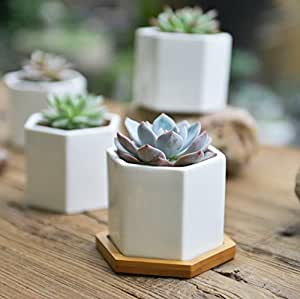 SUN-E 3.2 Inch Modern White Ceramic Succulent Planter Pots / Mini Flower Plant Containers with Bamboo Saucers (Hexagonal)