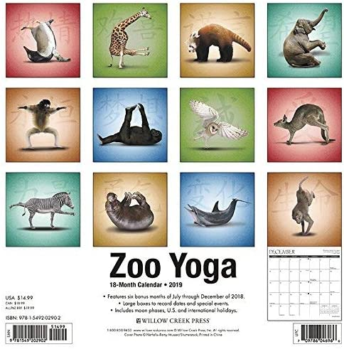 Amazon.com : Zoo Yoga - 2019 Wall Calendar : Office Products
