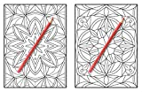 100 Amazing Patterns: An Adult Coloring Book with