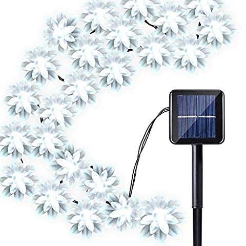 Qedertek Solar String Lights Flower, 19ft 30 LED Waterproof Garden Decoration Lighting for Indoor/Outdoor, Patio, Lawn, Garden, Christmas, and Holiday Festivals - Christmas Lawn Lights