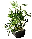 Faux Bamboo Plant- Lush Artificial Bamboo in Pot With River Stones Product SKU: HD222717