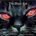 The Black Cat | Drac Von Stoller