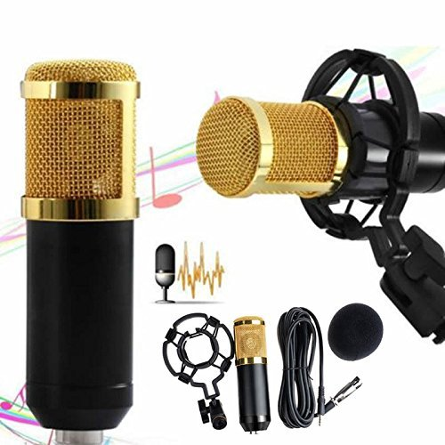 WALLER PAA Condenser Pro Audio BM800 Microphone Sound Studio Dynamic Mic +Shock Mount (Black)