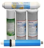 General Water Solution Puroflo 4-Stage Under Sink Reverse Osmosis Annual Replacement Filter Kit