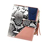 Pocket Watch Chains,Women Leopard Print Snake Cute Fashion Purse Tassel Wallet Coin Card Clutch,Travel Tote Bags