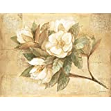 Pimpernel - Sugar Magnolia Placemats - Set Of 4 (Large)