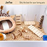 JanYoo Rabbit Toys Guinea Pig Chinchilla Bunny