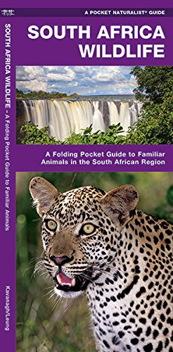 Read Online South Africa Wildlife: A Folding Pocket Guide to Familiar Animals (A Pocket Naturalist Guide) pdf