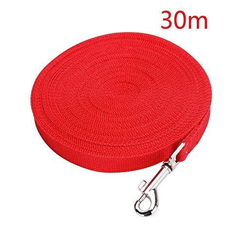 EMeskymall 30m/100ft Dog Puppy Pet Training Obedience Lead Leash Rope (Red) in USA
